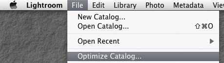 Optimize LR Catalog